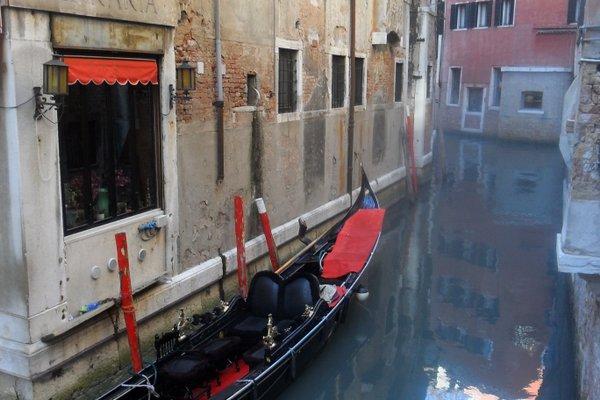 Happy Venice - фото 19