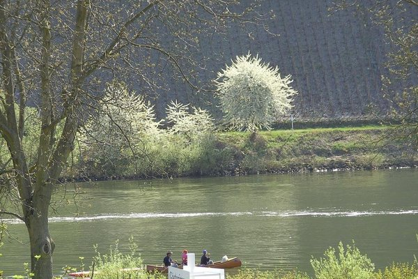 Haus Klosterblick - фото 18
