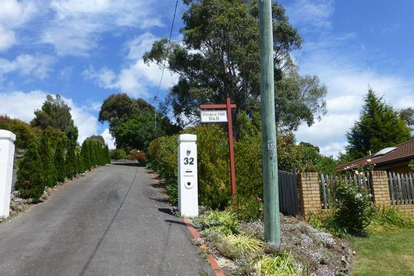 Protea Hill - фото 13