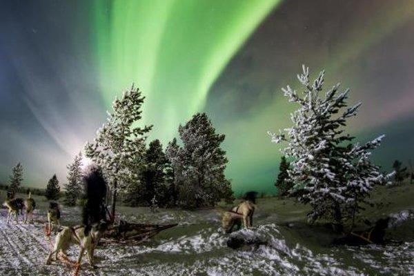 Kirkenes Snowhotel - фото 10