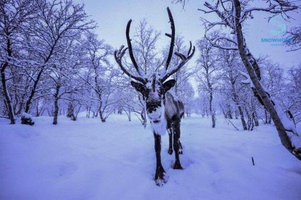 Kirkenes Snowhotel - 11