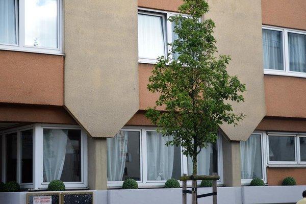 Hotel zum Brunnen - фото 23