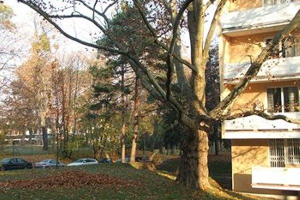 Apartment24 - Schoenbrunn - фото 32