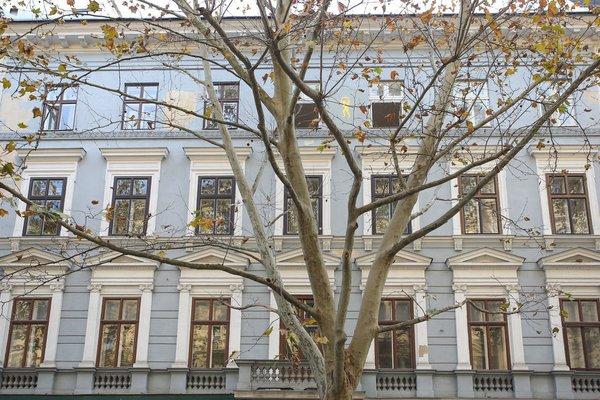 Best of Vienna Apartments Ferdinandstrasse - фото 22