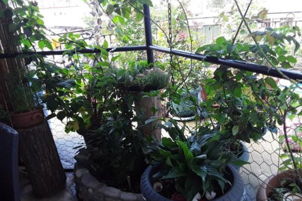 Апартаменты «На Лермонтова» - 11