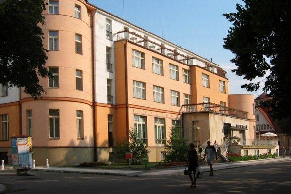 Hotel Libensky - фото 17