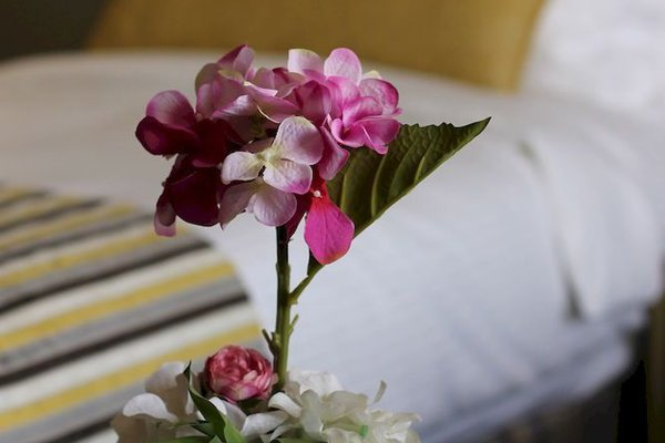 Ayla Bawadi Hotel - 10