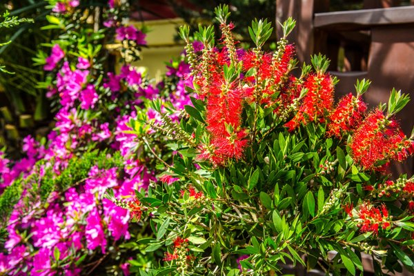 Вилла Орхидея - фото 13