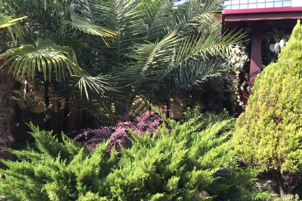 Вилла Орхидея - фото 20