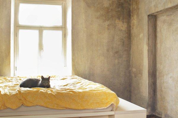 Kalmistu Designer Apartment - фото 6