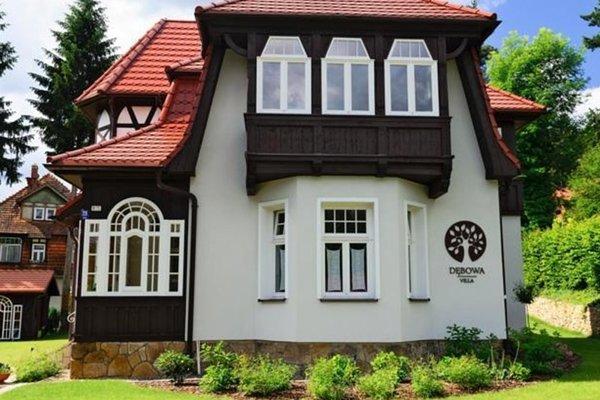 Villa Debowa - 15