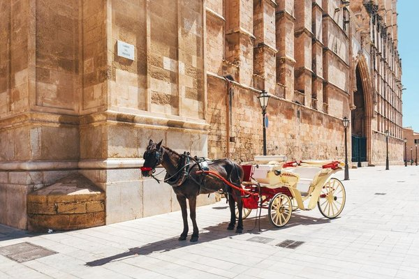 Sant Francesc Hotel Singular - фото 23