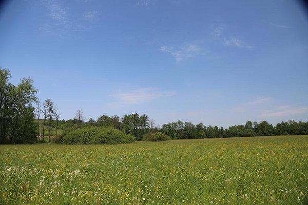 Gospodarstwo Agroturystyczne Stary Mlyn Wilczkowice - фото 23