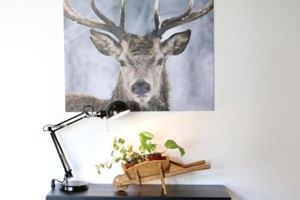 Apartaments Lo Paller - фото 12