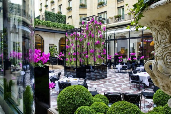 Four Seasons Hotel George V Paris - фото 19