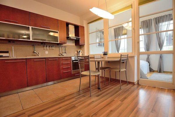 Vic Apartament Petit - фото 5