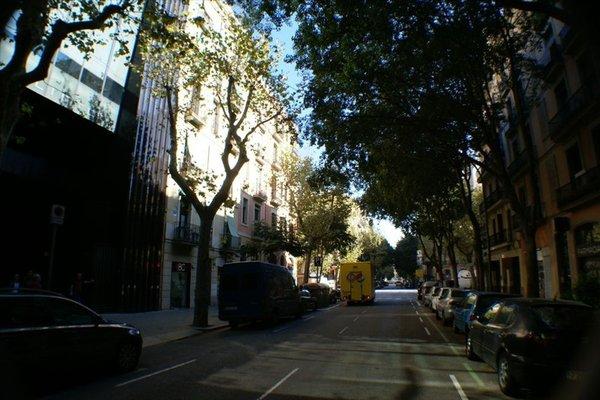 Flateli Borrell - фото 20
