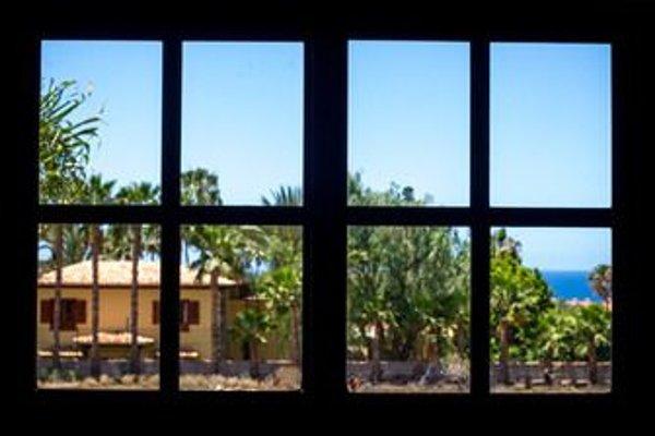 La Tortuga Hostel - фото 12