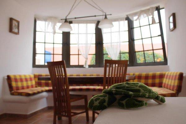 La Tortuga Hostel - фото 5
