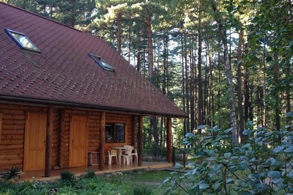 Forest Guesthouse - 47