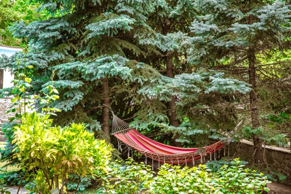 Отель Муссон - фото 9