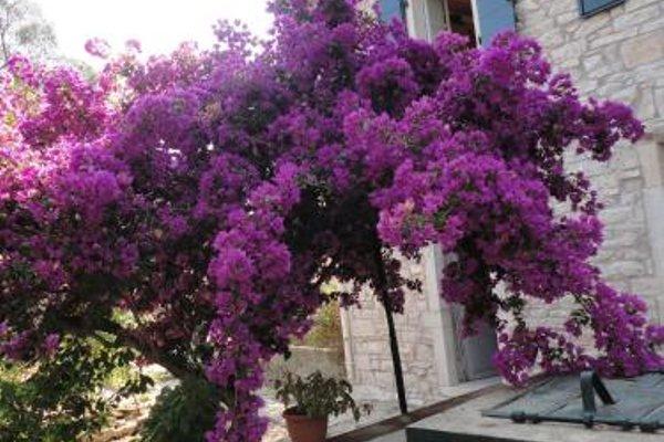 Villa Christina - 3