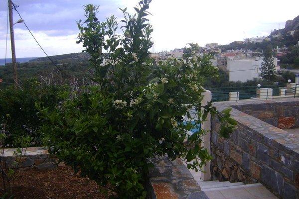 Kavousanos Apartments - фото 20