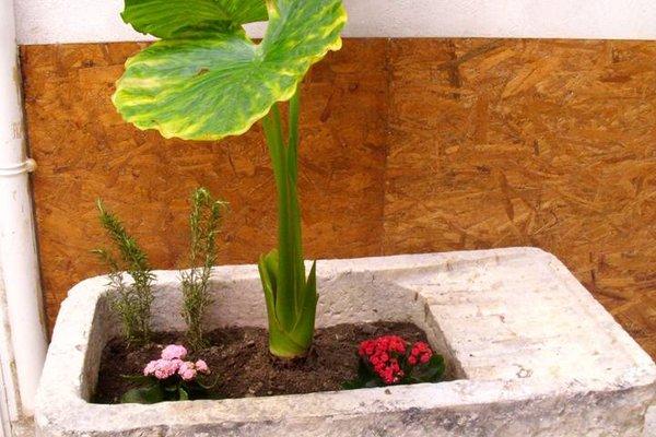 Appartamento La Conchiglia - фото 20