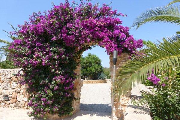 Hacienda d'Armando - фото 15