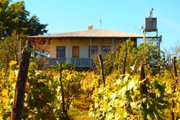 Guesthouse Zedafoni - фото 11
