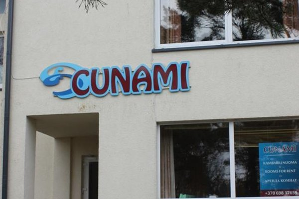 Cunami - фото 17