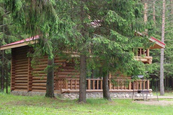 База отдыха Приют Охотника - фото 16