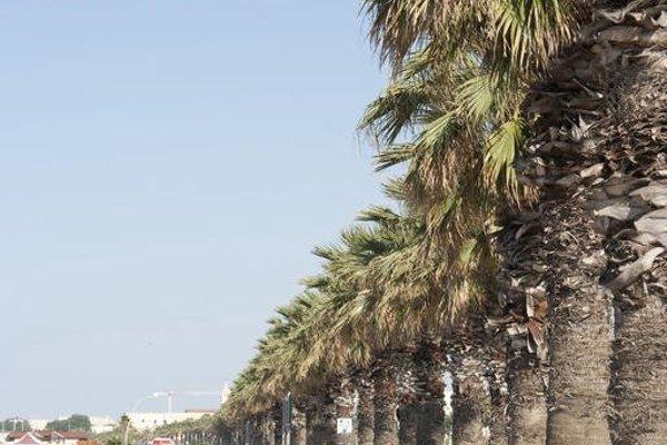 La Palma Del Sol - фото 21