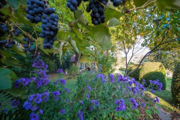 Winemakers Escape - фото 13