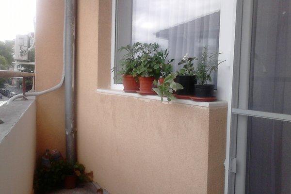 Luxury Apartment Lazur 2 - 19