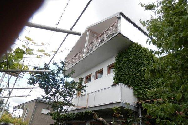 Hotel Neli Telavi - фото 17
