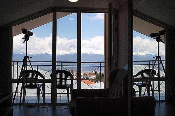 Hotel Neli Telavi - фото 18