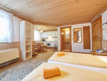 Апартаменты Appartements Living Saalbach by Easy Holiday