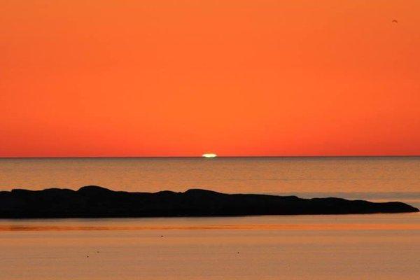 Ocean Park Island - фото 8