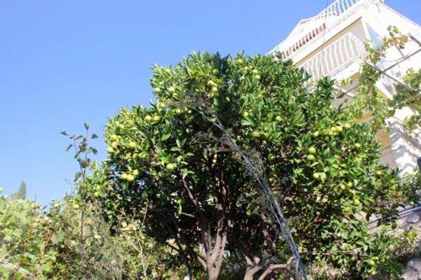 Apartment Dubrovnik 8554a - фото 10