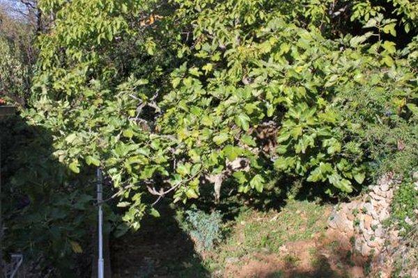 Apartment Dubrovnik 8554a - фото 11