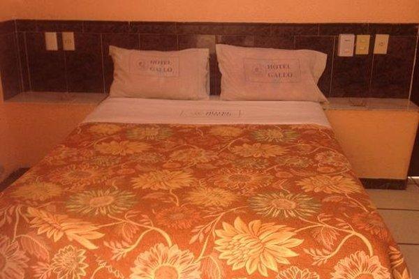 Hotel Gallo Rubio - фото 9