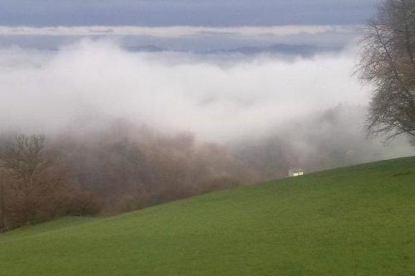 """Landgasthof & Pension """"Zur Schonen Aussicht"""" - фото 17"""