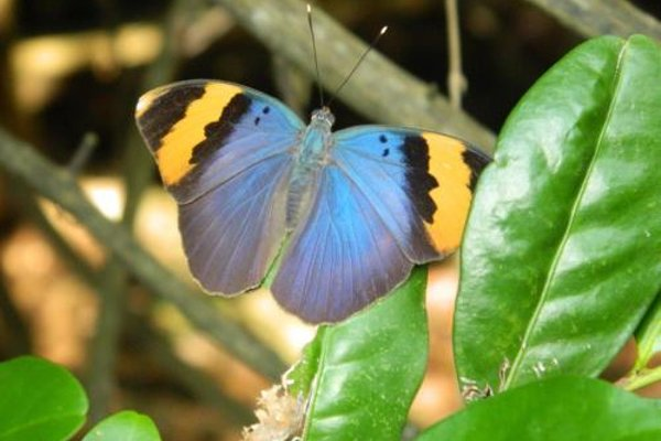 Stilts Backpackers - 17