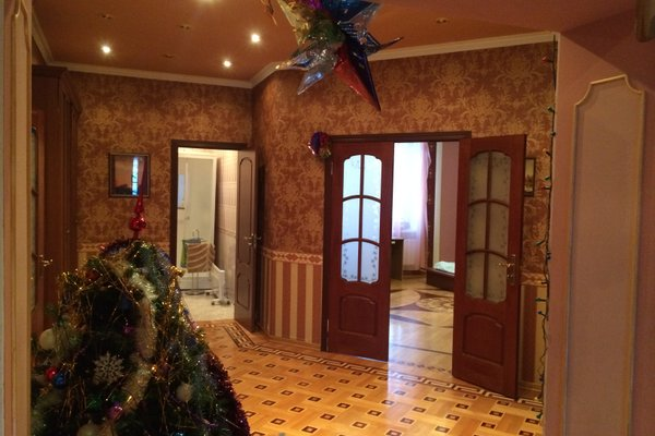 Мини-отель Вилис - фото 18