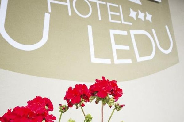 Hotel u Ledu - фото 5