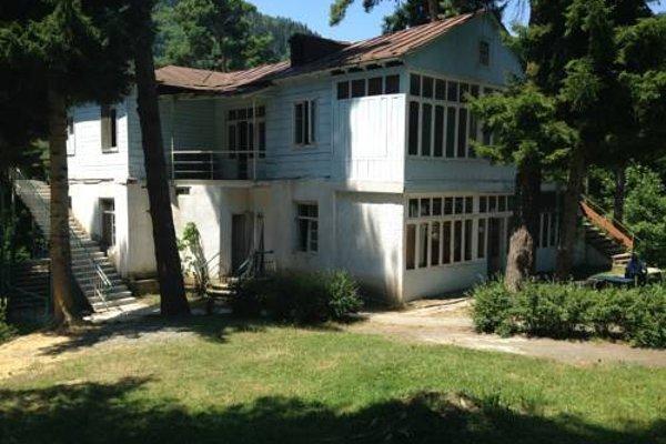 Borjomi Plato Hostel - фото 8
