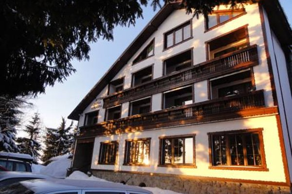 Hotel Pavla Vysocina - фото 18