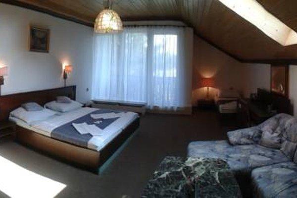 Hotel Pavla Vysocina - фото 3