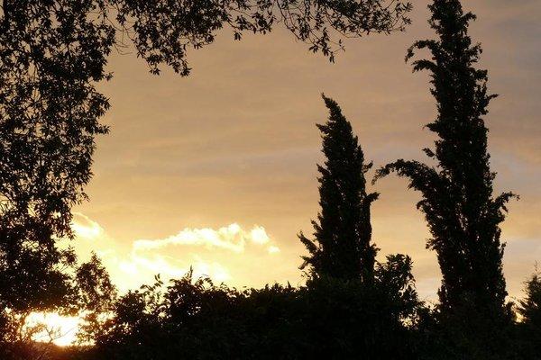 Al Vecchio Leccio - фото 9